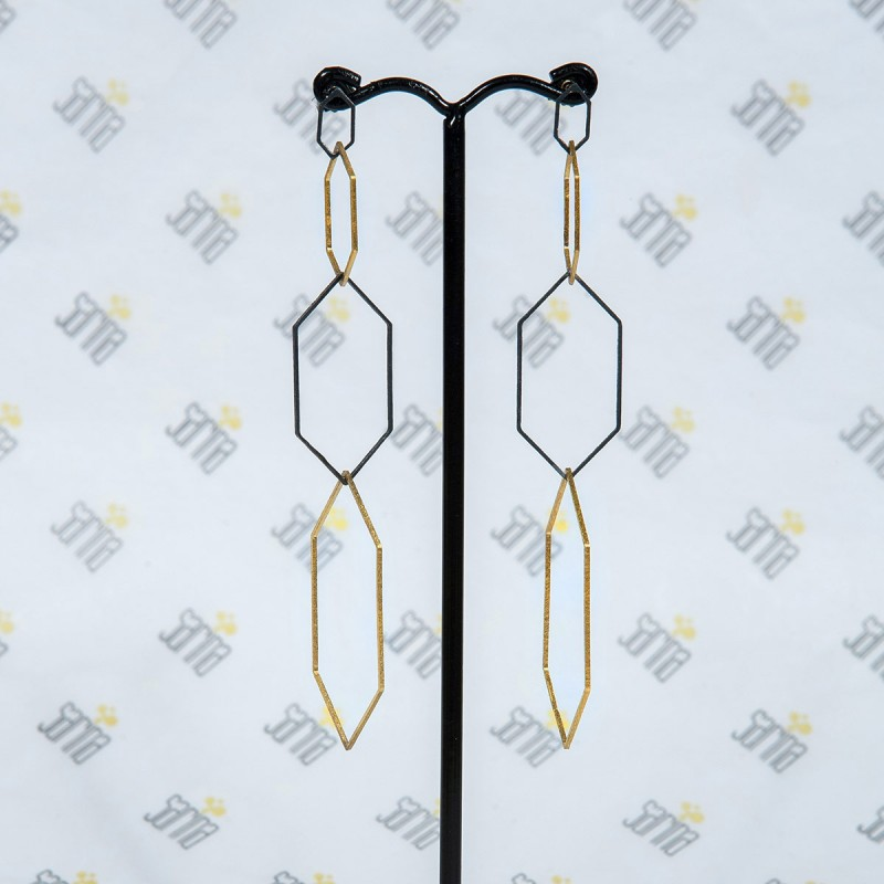 Earrings Roi